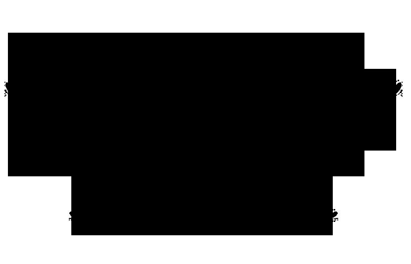 laurel-2018 negro